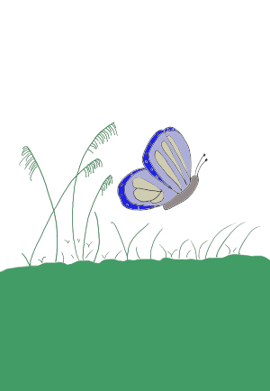 Image of butterfly flying over grass